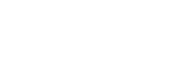 Levee Management Consulting Logo